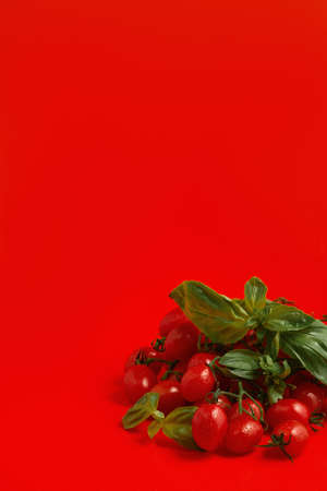 Ripe organic red branches of cherry tomatoes in drops of water, basil leaves on a red background. Close-up with copy space. Healthy food, healthy lifestyle, pasta cooking idea. Selective focus Stock fotó