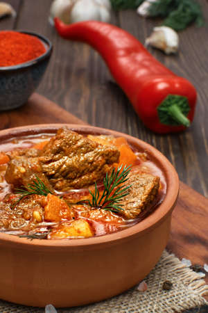 Beef stew with potatoes, carrots, wig and spices (Hungarian goulash). Traditional dish of eastern europe and turkey (gyuvech). Close-up, selective focus