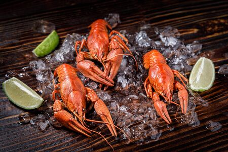 Fresh cooked crayfish with lime in ice cubes on dark wooden surface