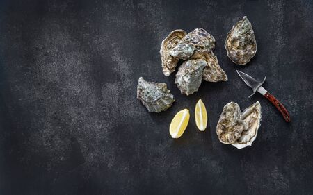 Fresh oysters, knife, lemon wedges on dark stone background. Top view with copy space. Opened fresh raw oysters. Oyster bar. Seafood. Oysters concept. Party food. Space for text. Stock Photo