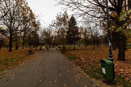 Morning, alleys of Izvor Park. People running, walking, going to work in Bucharest, Romania, 2019