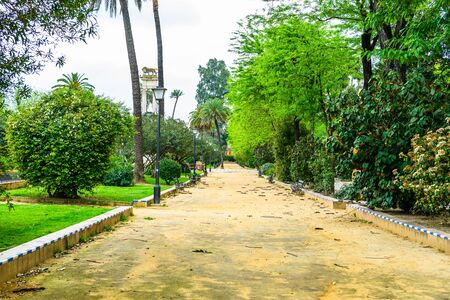 Changes and complications caused by coronavirus epidemy, world without crowds, virus empties streets and parks. Almost empty street in Seville, Spain, 2020.
