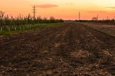 Beautiful colorful orange sunset sky over the agricultural field. Zdjęcie Seryjne