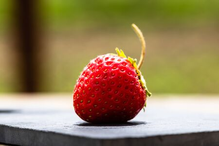 Close up of fresh strawberry showing seeds achenes. Details of a fresh ripe red strawberry.