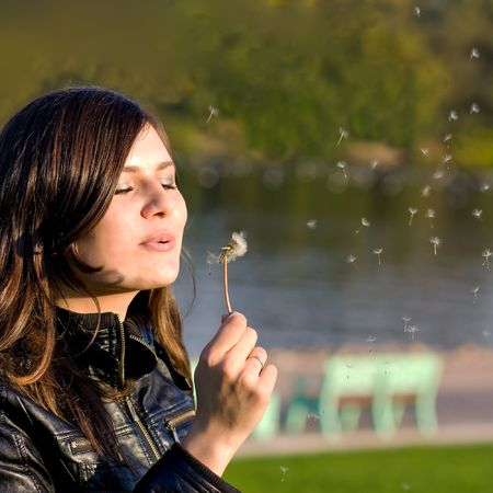 young beautiful woman with dandelion photo