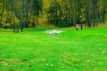 vivid green field in autumn forest Stock Photo - 6028923