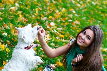 Young girl feeding her dog photo