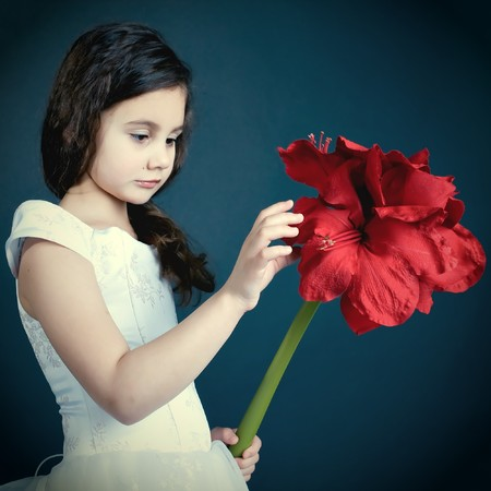 beautiful dreaming girl with red dry flower, autumnal mood photo