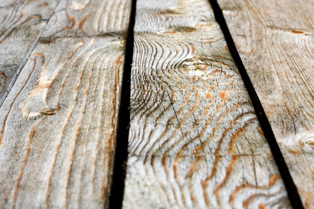 Closeup of dark wood floor. Shallow DOF. photo