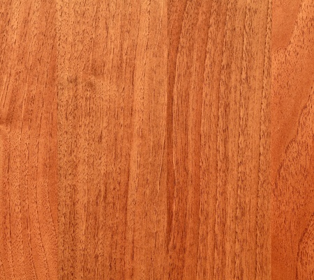 Fragment of the old wooden board photo