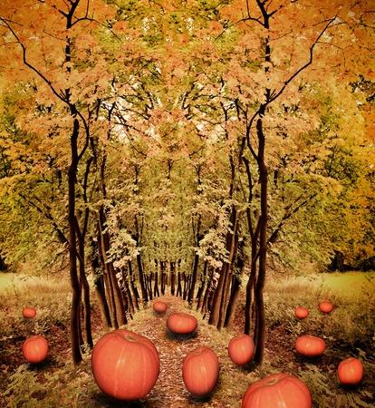 flying orange pumpkins in the weird dark autumnal forest lane photo