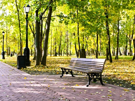beautiful colorful autumn park in sunny day Фото со стока