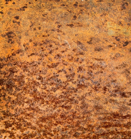 oxidized: Background of rusty metal plate texture