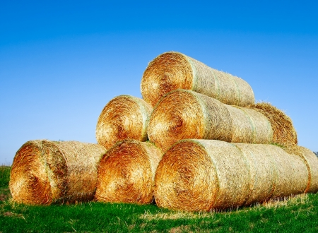 light golden haystack on the meadow over autumnal blue clear sky Stock Photo