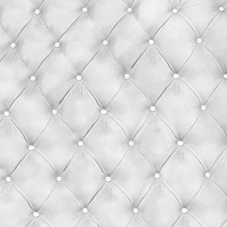 Luxus und modernen Stil Hintergrund mit klassischen weißen und grauem Leder Textur eines alten Retro-Tür mit Metall-Buttons