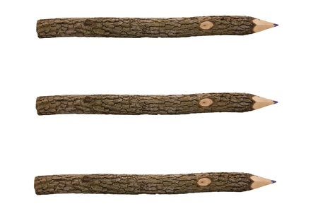 Pencils for drawing from a tree branch separately on a white background photo