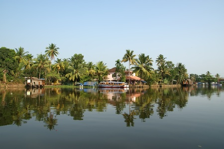 coconut palms on the shore of the lake. Kerala, South India photo
