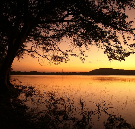 Island Sri Lanka (Ceylon), sunset on lake in the central part of island photo