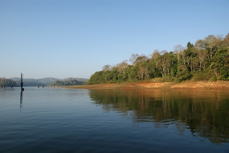 periyar:  lake, Periyar National Park, Kerala, India