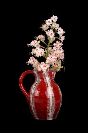 minutiae: Horse chestnut flower in a vase on a black background