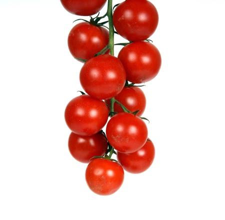 cherry tomato --is a smaller garden variety of tomato, on a white background photo