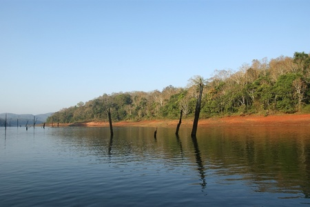 lake, Periyar National Park, Kerala, India photo