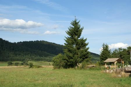 Green field - Mountain Landscape Stock Photo - 11330665