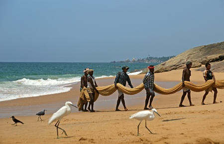 Kovalam, Kerala, South India.  Fishermen are pulling their fishing net in combined work out of the sea