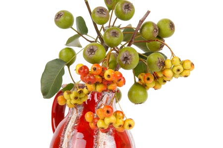 Autumn bouquet with berries of hawthorn and pear in a glass vase on a white background photo