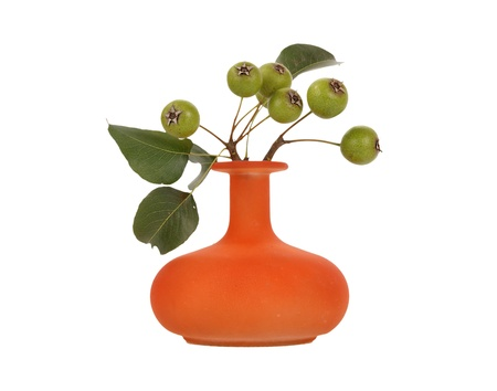 Autumn bouquet with natural pear tree branches in a glass vase on a white background