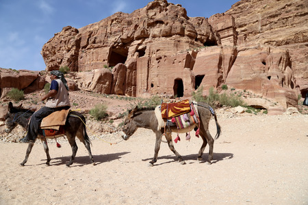 bedouin: Bedouin men on Mules in Petra,  Jordan