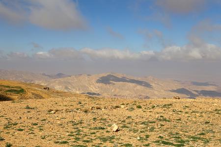 waterless: desert mountain landscape (aerial view), Jordan, Middle East Stock Photo