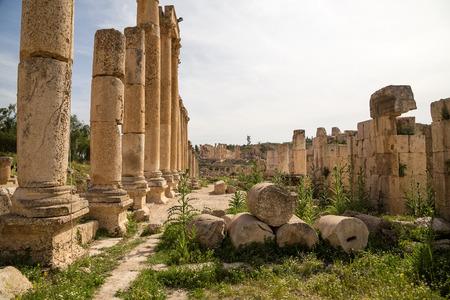 columnas romanas: Roman Columns in the Jordanian city of Jerash (Gerasa of Antiquity), capital and largest city of Jerash Governorate, Jordan Foto de archivo