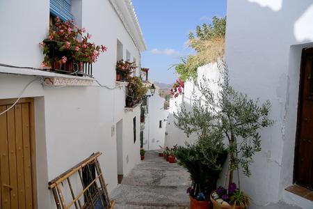 frigiliana: Frigiliana-- is one of beautiful white towns in the province of Malaga, Andalusia, Spain
