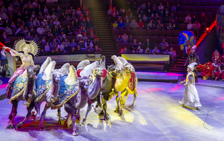 Presentation (Show) in Moscow State Circus (Big Moscow Circus on Vernadskogo Prospekt), Russia