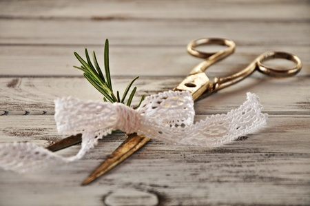 Rosemary with lace caught in the scissors photo