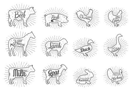 Set of butchery icon templates, farm animals with sample text. Retro styled farm animals silhouettes collection for groceries, meat stores, packaging and advertising. Illustration