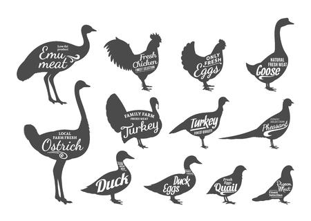 Satz Metzgerei beschriftet Vorlagen. Geflügel-Symbole mit Beispieltext. Geflügel Silhouetten Sammlung für Lebensmittel, Fleisch und Werbung. Vektor-Etiketten-Design.