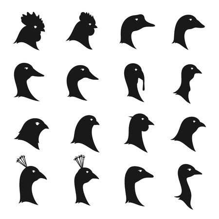 A Vector poultry icons isolated on white. Poultry icons collection for groceries, meat stores, agriculture markets and advertising.