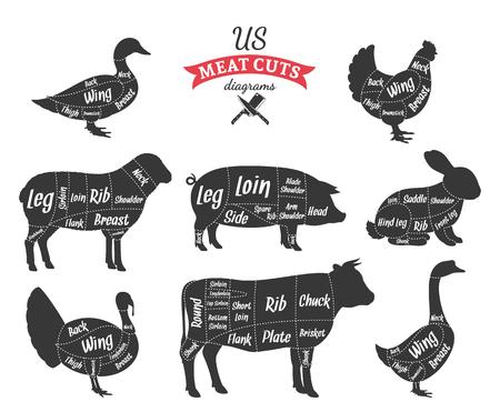American cuts of beef, pork, lamb, rabbit, chicken, duck, goose and turkey diagrams Stock Illustratie