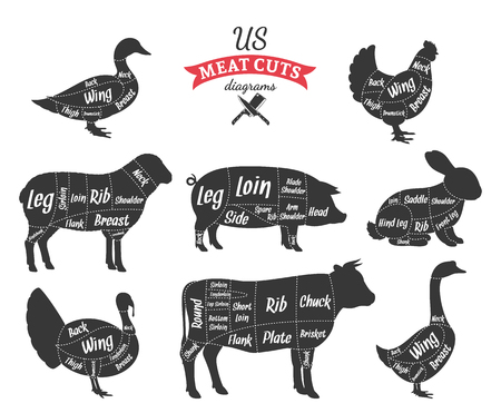 American cuts of beef, pork, lamb, rabbit, chicken, duck, goose and turkey diagrams Illustration