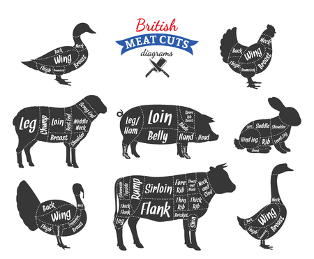 British cuts of beef, pork, lamb, rabbit, chicken, duck, goose and turkey diagrams