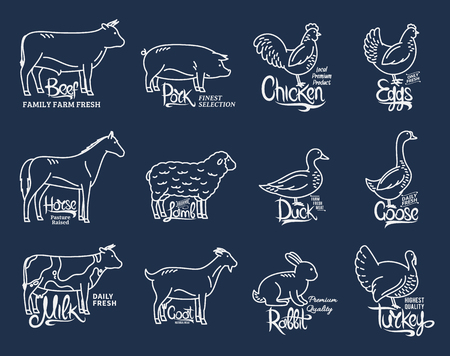 Set of butchery logo templates. Farm animals with sample text. Modern thin line farm animals icons collection for groceries, meat stores, packaging and advertising. Vector logotype design. Stok Fotoğraf - 97073068