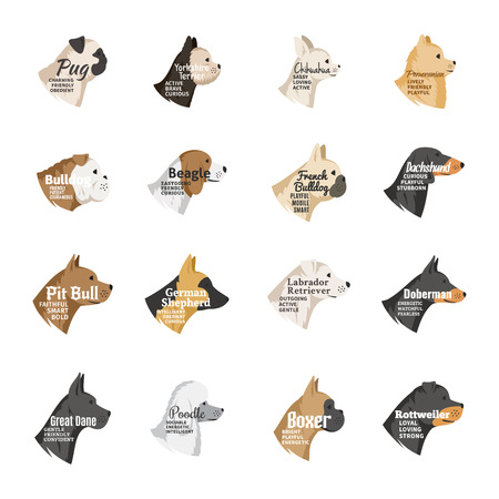 Dog breeds icons collection with names and personality description isolated on white