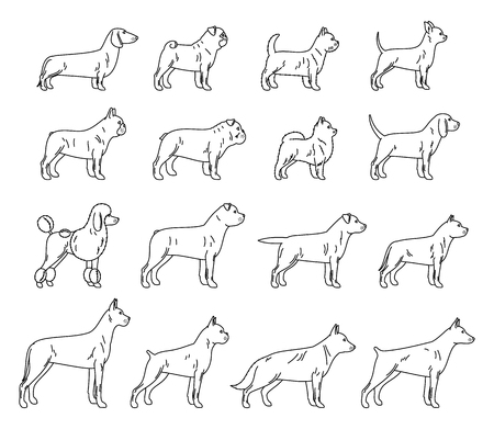 Vector dog thin line icons collection isolated on white. Illustration