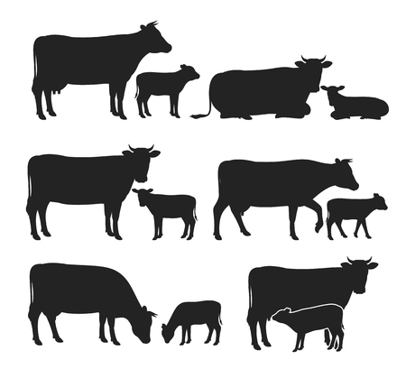 Vector cow and calf silhouettes isolated on white for farms, groceries, packaging and branding