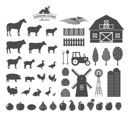 Vector farm and farming icons and design elements. Farm animals collection. Fruits and vegetables icons