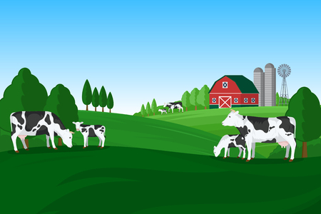 Vector milk farming illustration. Summer rural landscape, cows, calves and design elements. 向量圖像