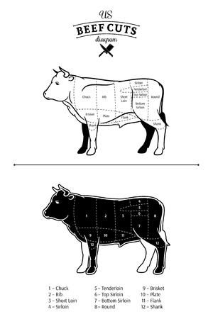American (US) beef cuts diagram. Stock Illustratie