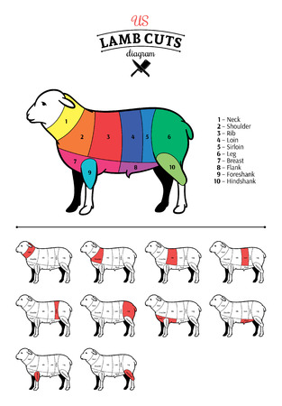 American (US) lamb cuts diagram.